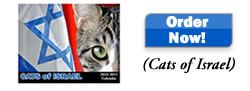 Cats of Israel Calendar