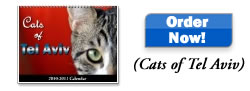 Cats of Tel Aviv Calendar
