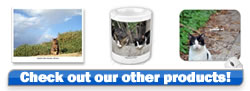 Cats of Israel Products